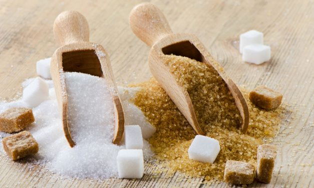 Priprava hrane brez oz. z minimalno vsebnostjo sladkorja