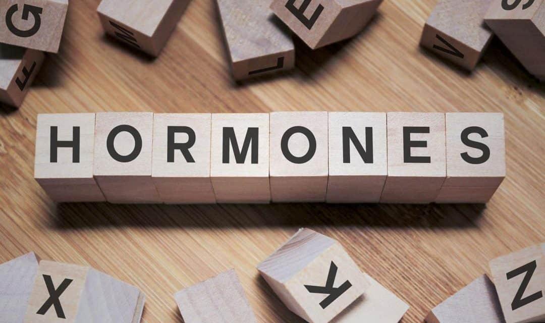 Vpliv maščobe v hrani na tvorbo hormonov