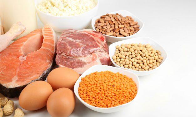 So živalske beljakovine boljše od rastlinskih?